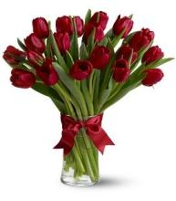 20 Red Tulips in a Vase