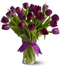20 Purple Tulips in a Vase