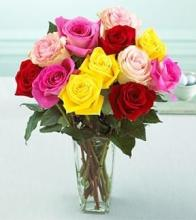 Dozen Mixed Medium Stemmed Roses in a Vase