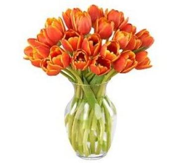 20 Orange Tulips in a Vase