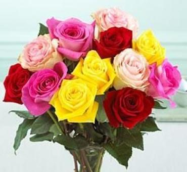 Dozen Mixed Medium Stemmed Roses Wrapped