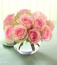 One Dozen Prettiest Roses Pave - Vday