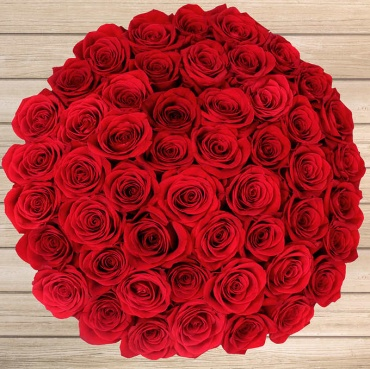 Five Dozen Red Long Stem Roses - Vday