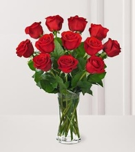One Dozen Red Long Stem Roses - Vday