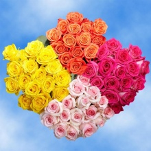 One Dozen Prettiest Color Roses - Vday