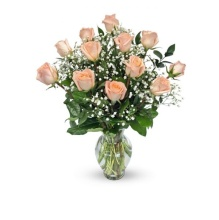 One Dozen Peach Long Stem Roses - Vday