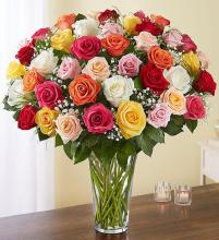4 Dozen Mixed Roses - Designer Choice