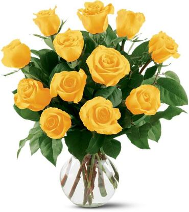 One Dozen Yellow Long Stem Roses - Vday