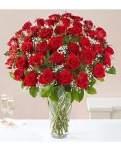 Four Dozen Red Long Stem Roses - Vday
