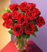 Dozen Red Roses Medium Stemmed in a Vase