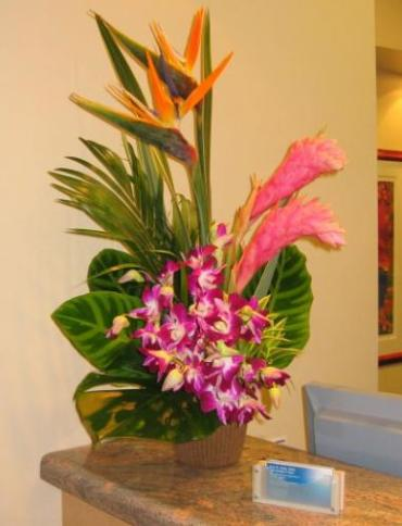 Medium Tropical Arrangment