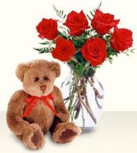 Half Dozen Premium Roses with a Bear