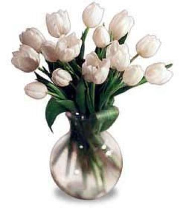 20 White Tulips in a Vase