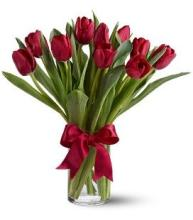 10 Red Tulips in a Vase