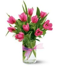 10 Hot Pink Tulips