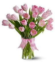 20 Pink Tulips in a Vase