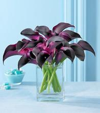 Sweet & Stylish Hot Chocolate Mini Calla Bouquet