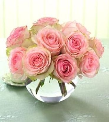One Dozen Prettiest Roses Pave -Mday