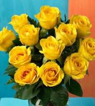 Dozen Medium Yellow Roses Wrapped