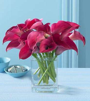 Pink Pirouette Mini Calla Bouquet